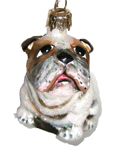 Bulldogge / Bulldog